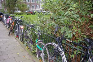 Amsterdam, Holland, travel, bikes, bicyclists