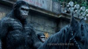apes, chimpanzees, Dawn of Planet of the Apes